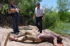 Matamoros Tamaulipas Photos | RM.